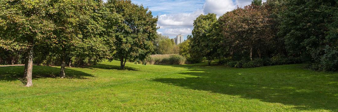 Bürgerpark; Foto: Ole Bader