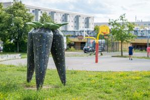 Schwarzwurzelplatz; Foto: Ole Bader