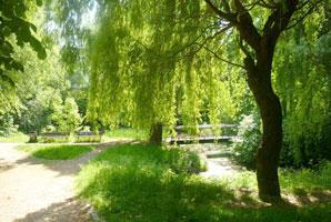Waldowpark